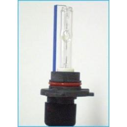 lampade Xeno HB3 6000K 35W
