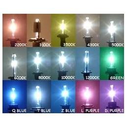 lampada Xeno in H8 6000K 35W